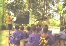 Class Under Trees in the Jungle